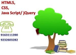 Learn web designing in Kolkata