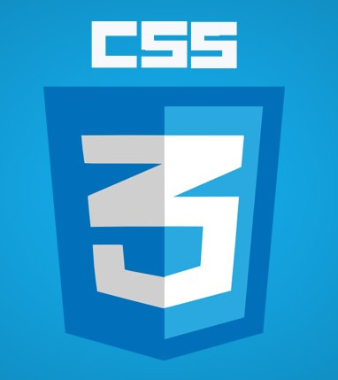 Learn CSS3 in Kolkata tutorial classes, call 9163111390